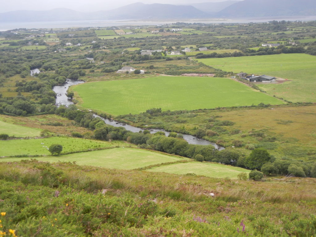 Lower Caragh River